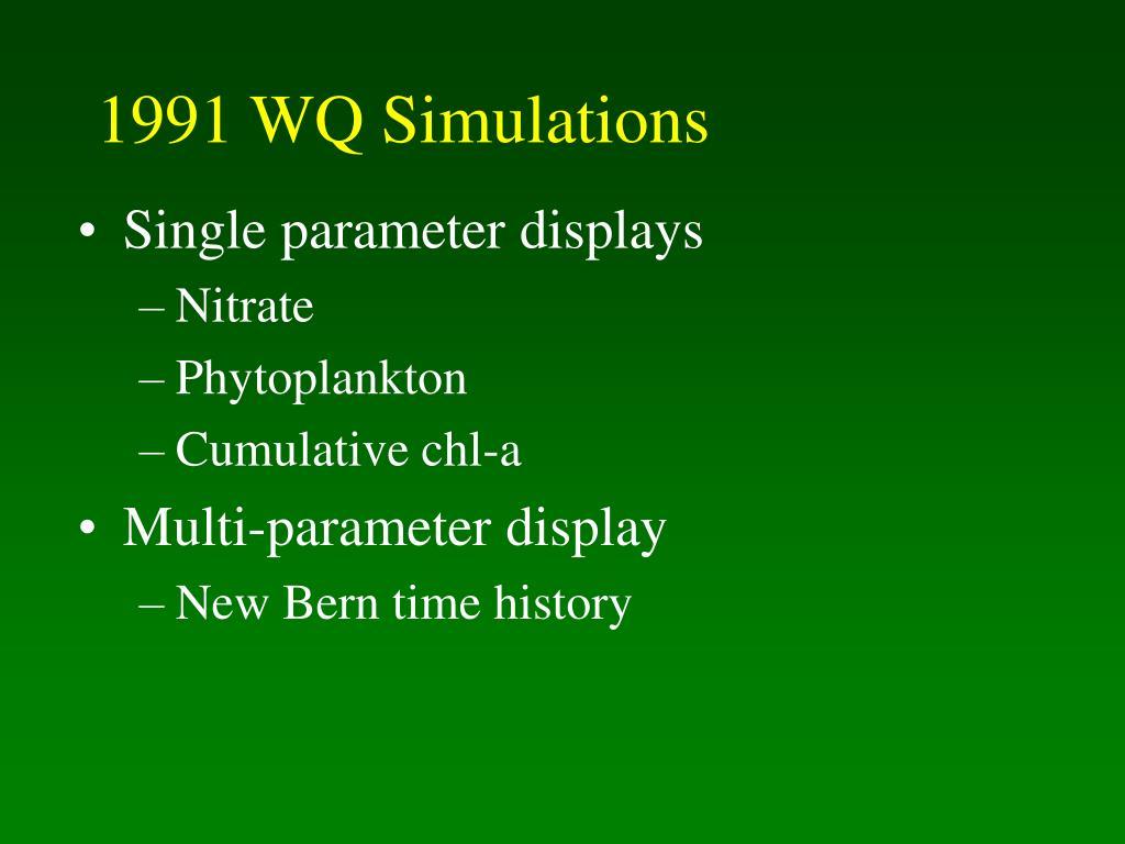 1991 WQ Simulations