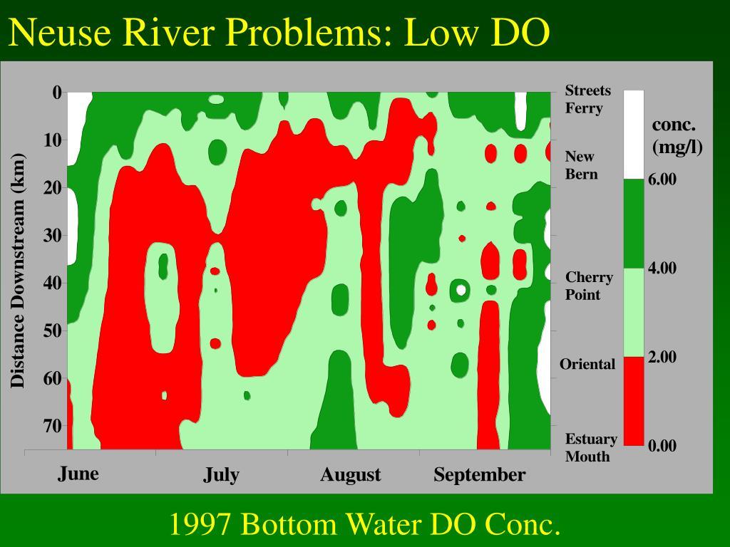Neuse River Problems: Low DO