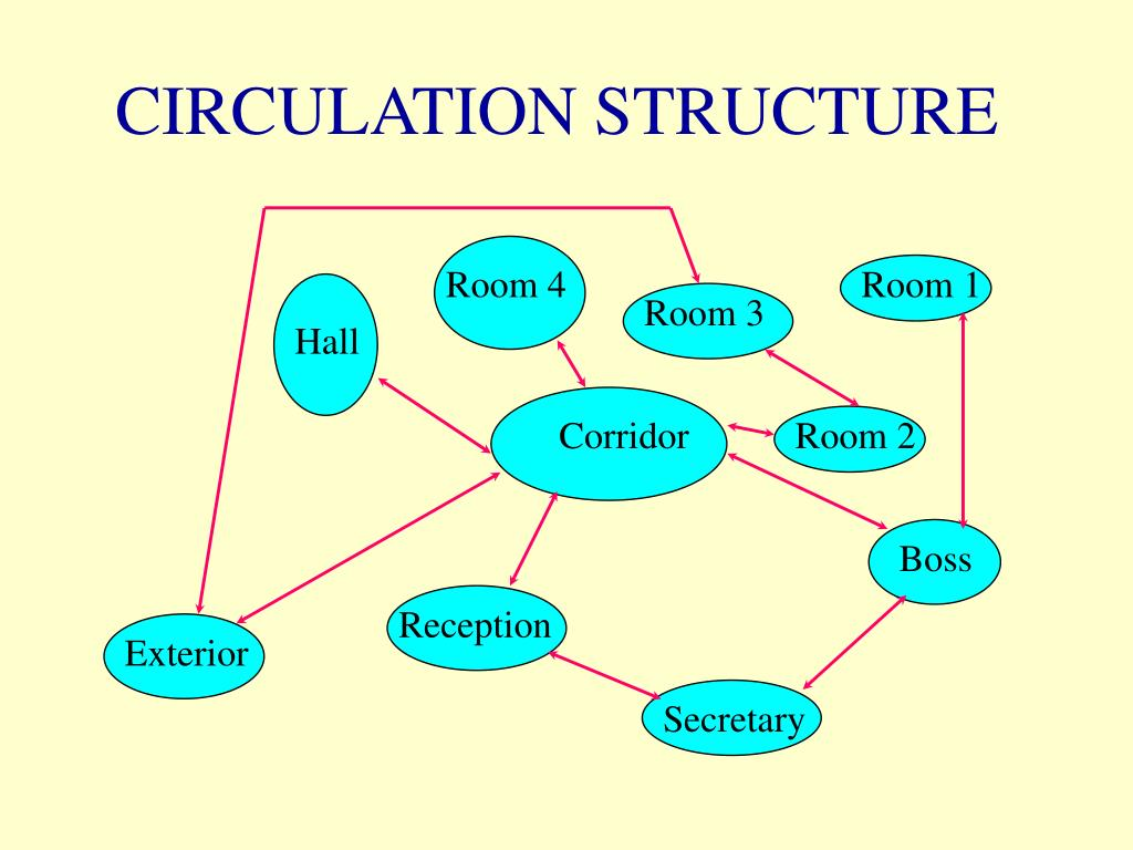 CIRCULATION STRUCTURE