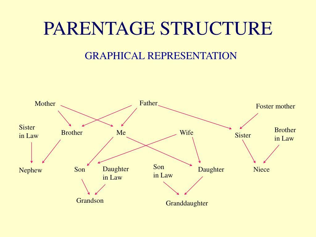 PARENTAGE STRUCTURE