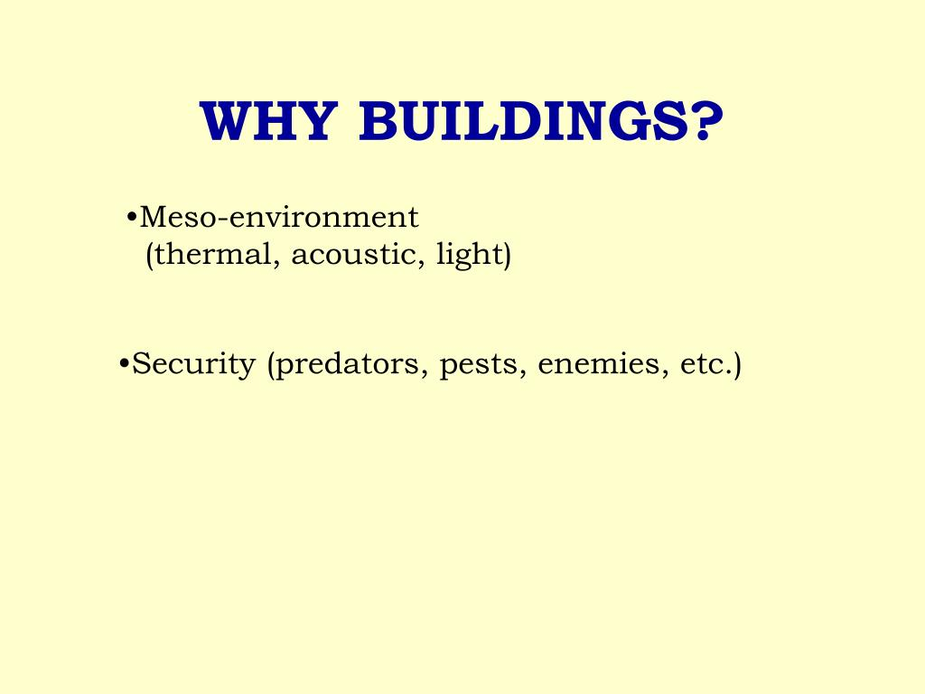 WHY BUILDINGS?