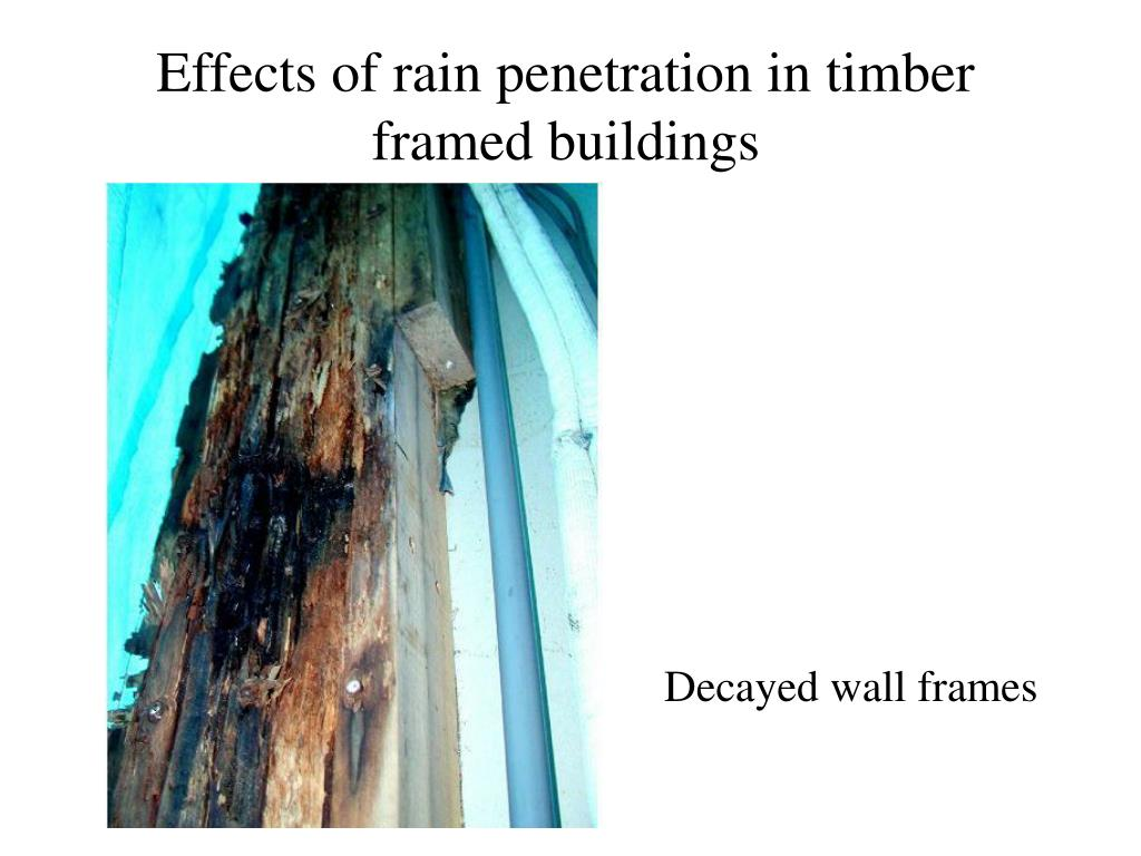Effects of rain penetration in timber framed buildings