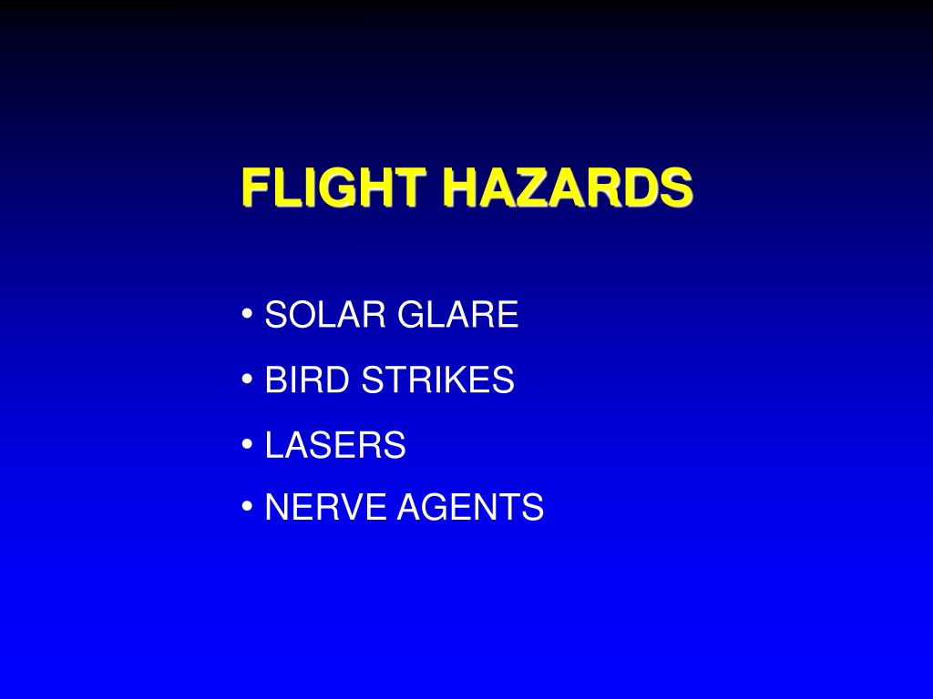 FLIGHT HAZARDS