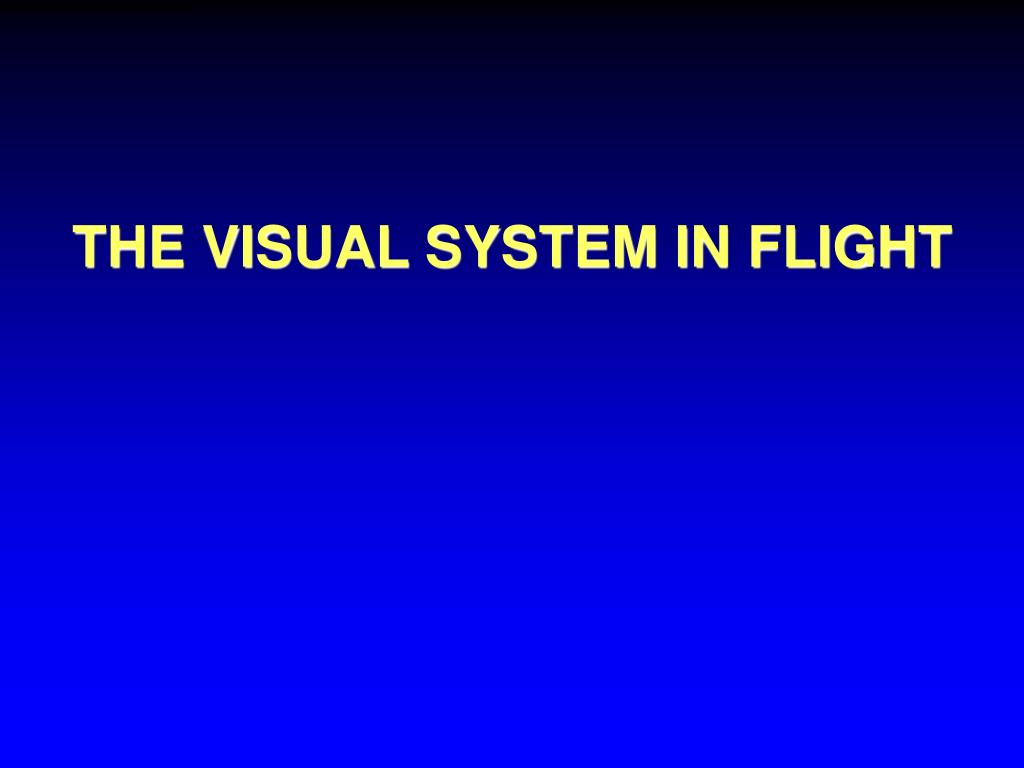 THE VISUAL SYSTEM IN FLIGHT