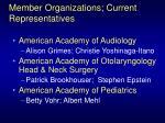 member organizations current representatives