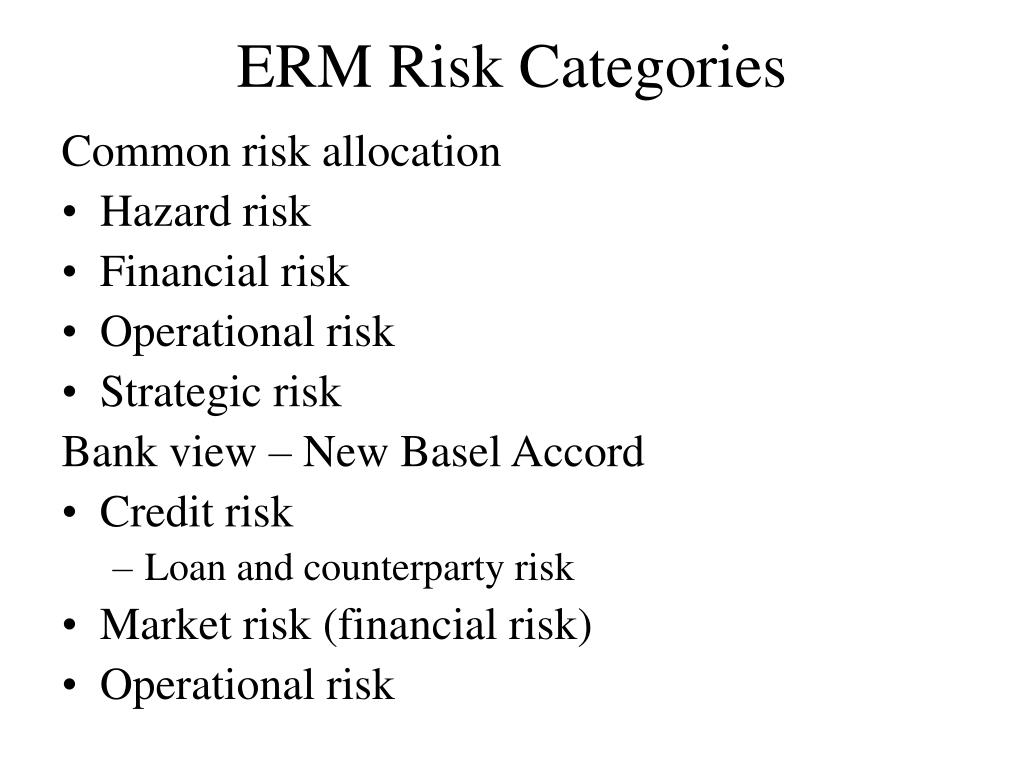 ERM Risk Categories
