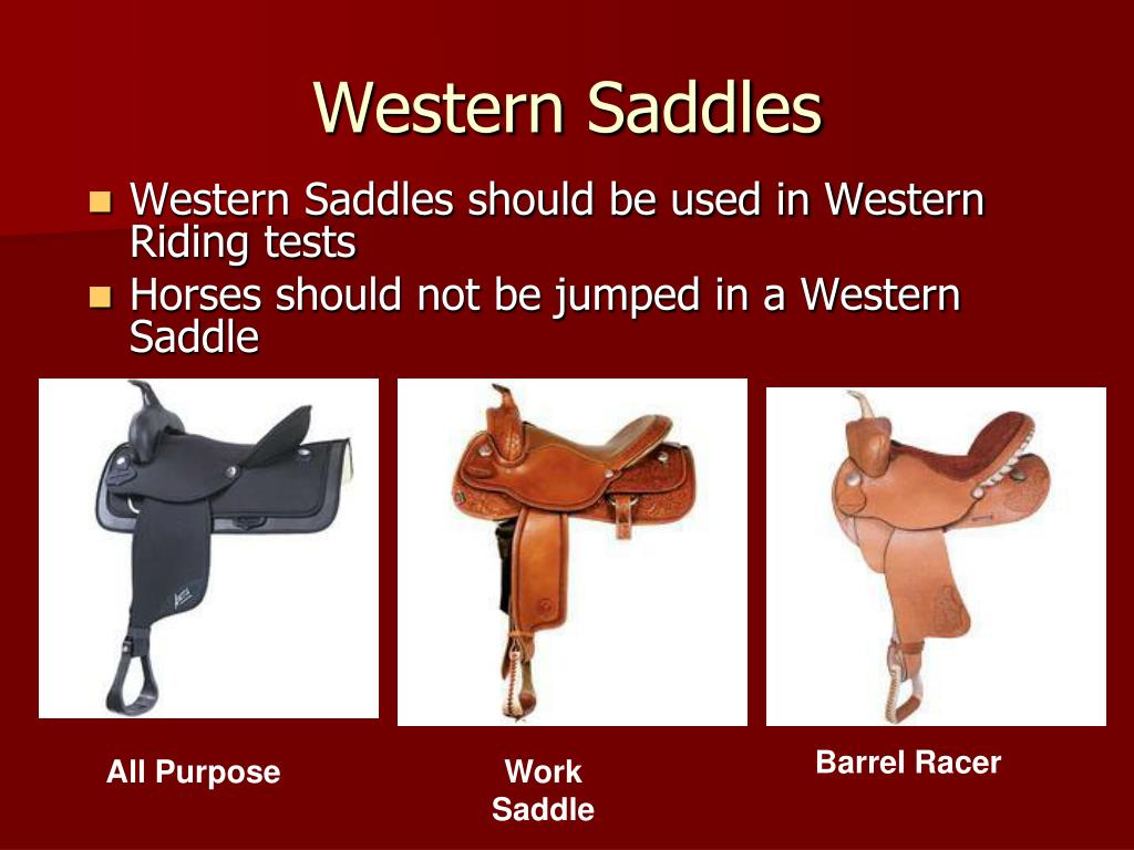 Western Saddles should be used in Western Riding tests
