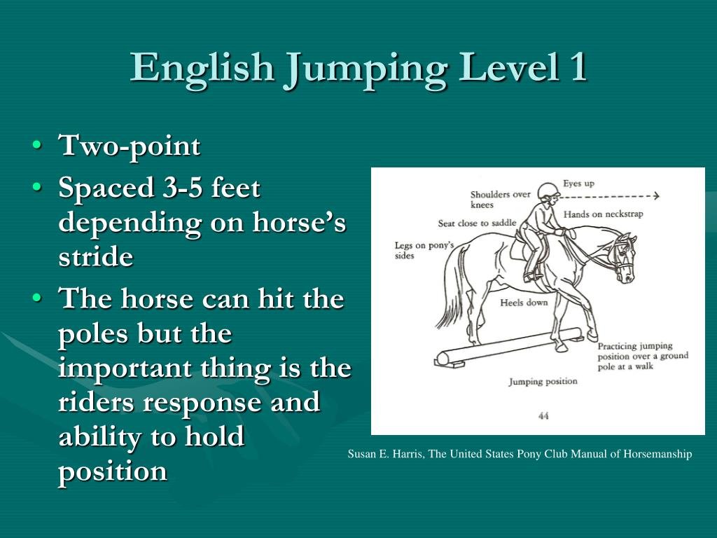 English Jumping Level 1