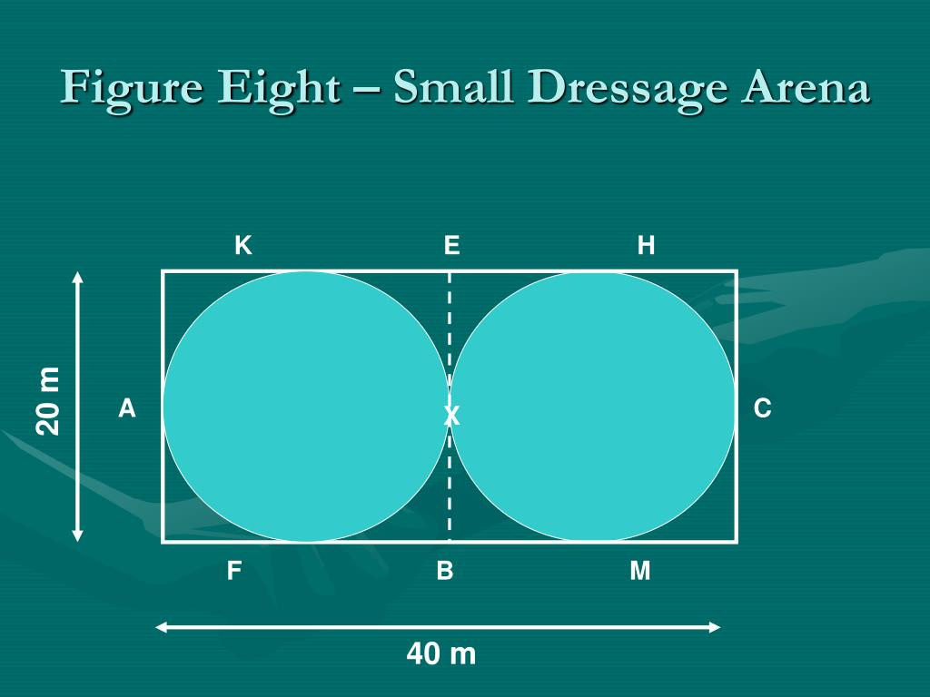 Figure Eight – Small Dressage Arena