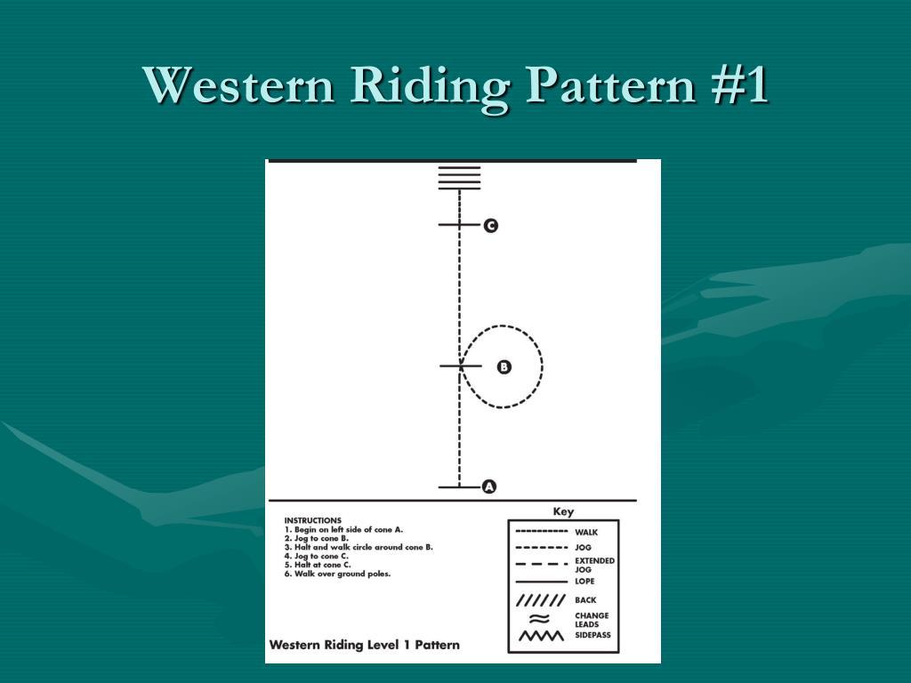 Western Riding Pattern #1