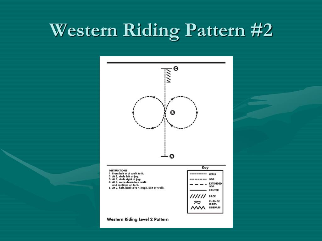 Western Riding Pattern #2