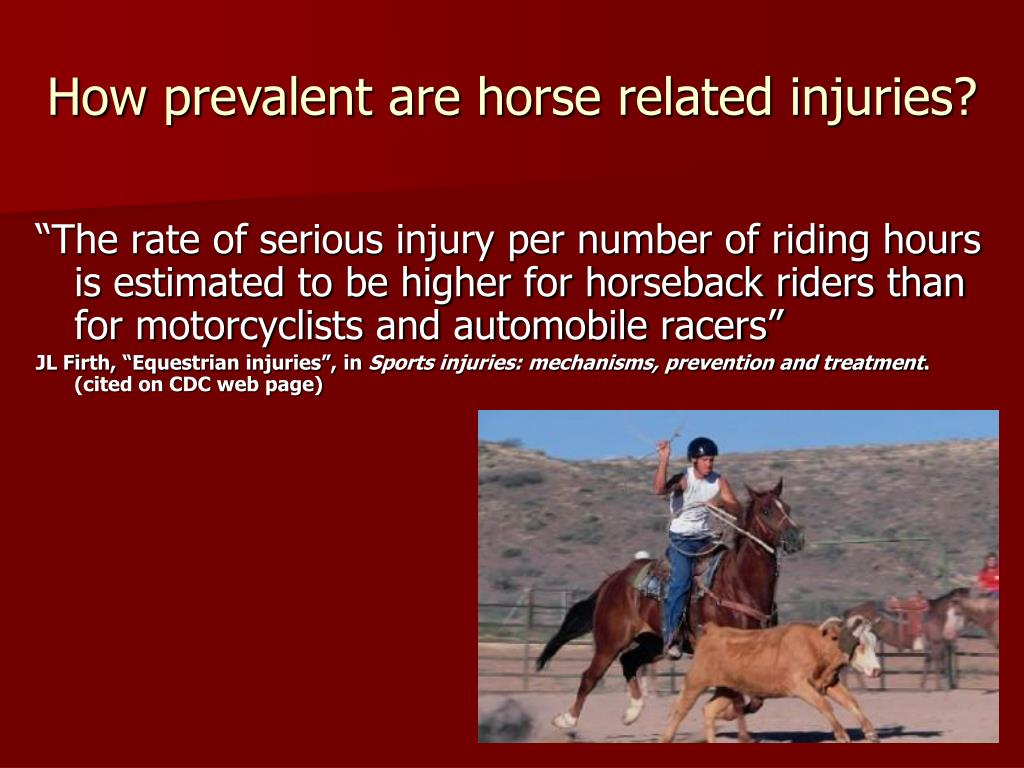 How prevalent are horse related injuries?