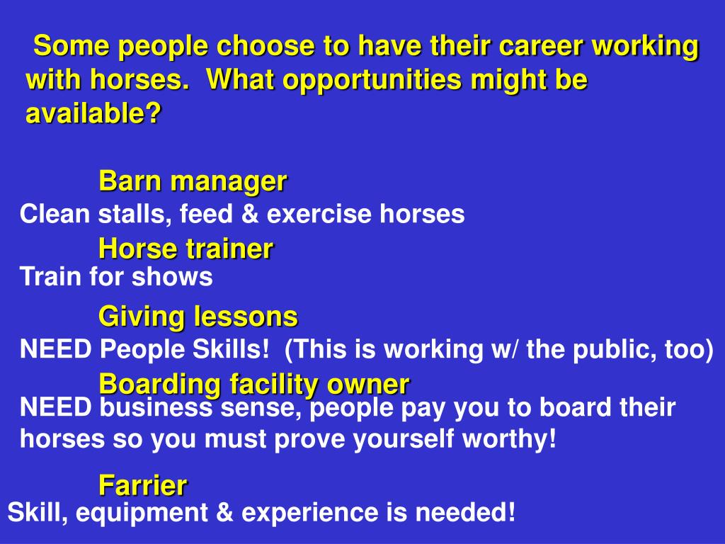 Some people choose to have their career working with horses.  What opportunities might be available?