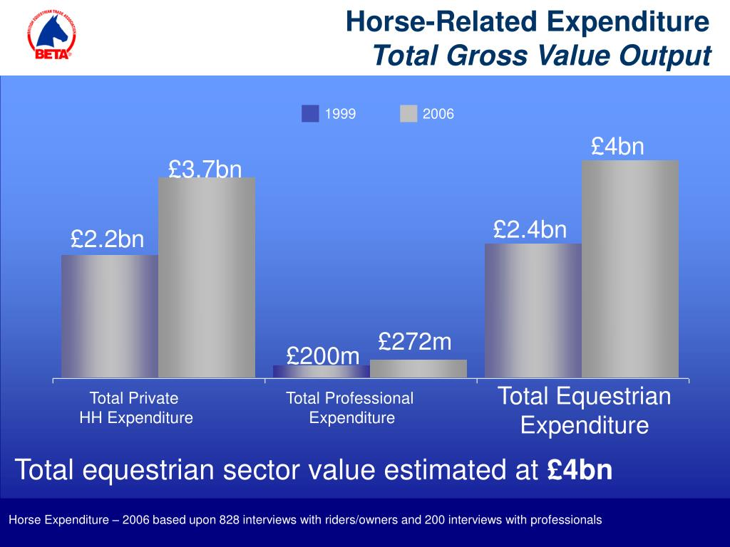 Horse-Related Expenditure