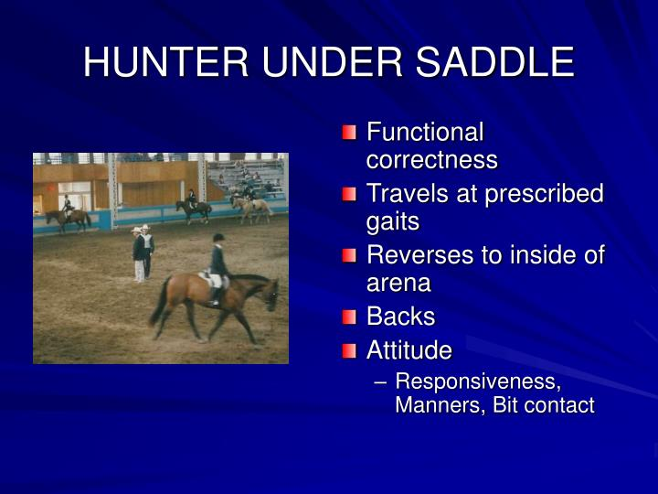 HUNTER UNDER SADDLE