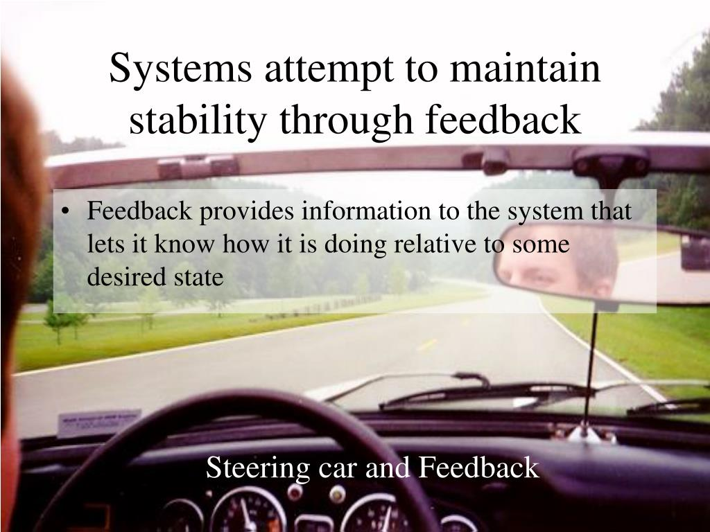Systems attempt to maintain stability through feedback