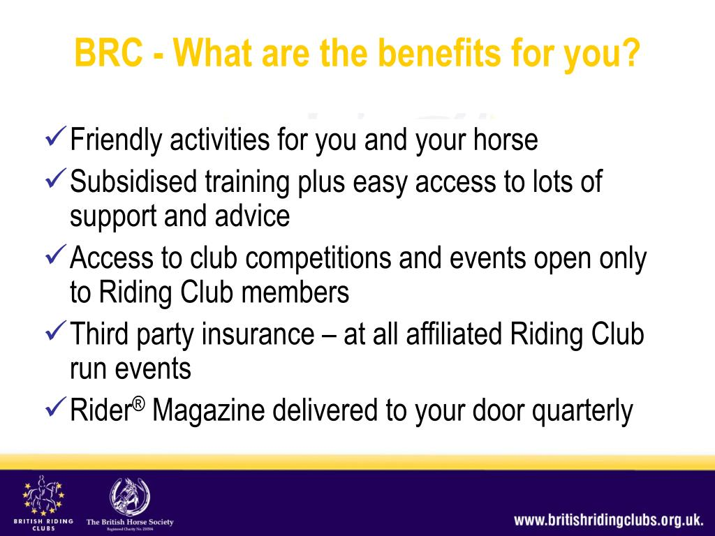 Friendly activities for you and your horse
