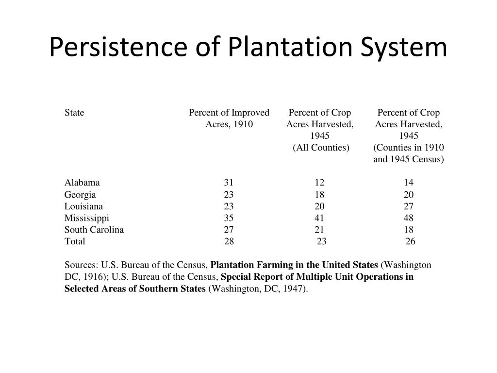Persistence of Plantation System