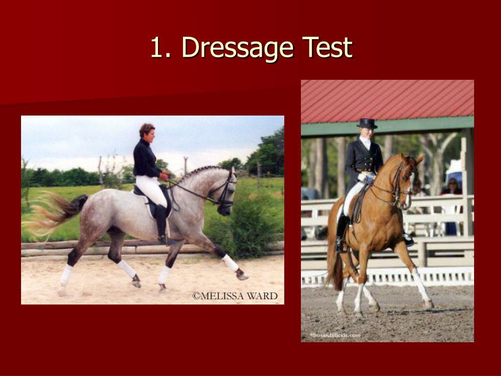 1. Dressage Test