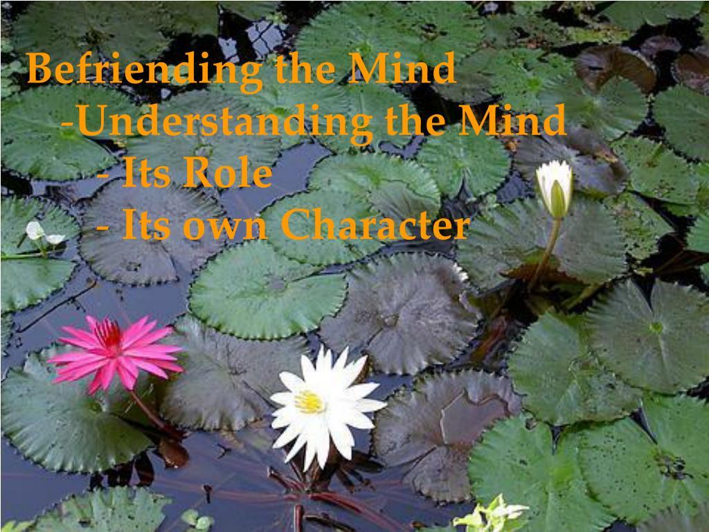 Befriending the Mind