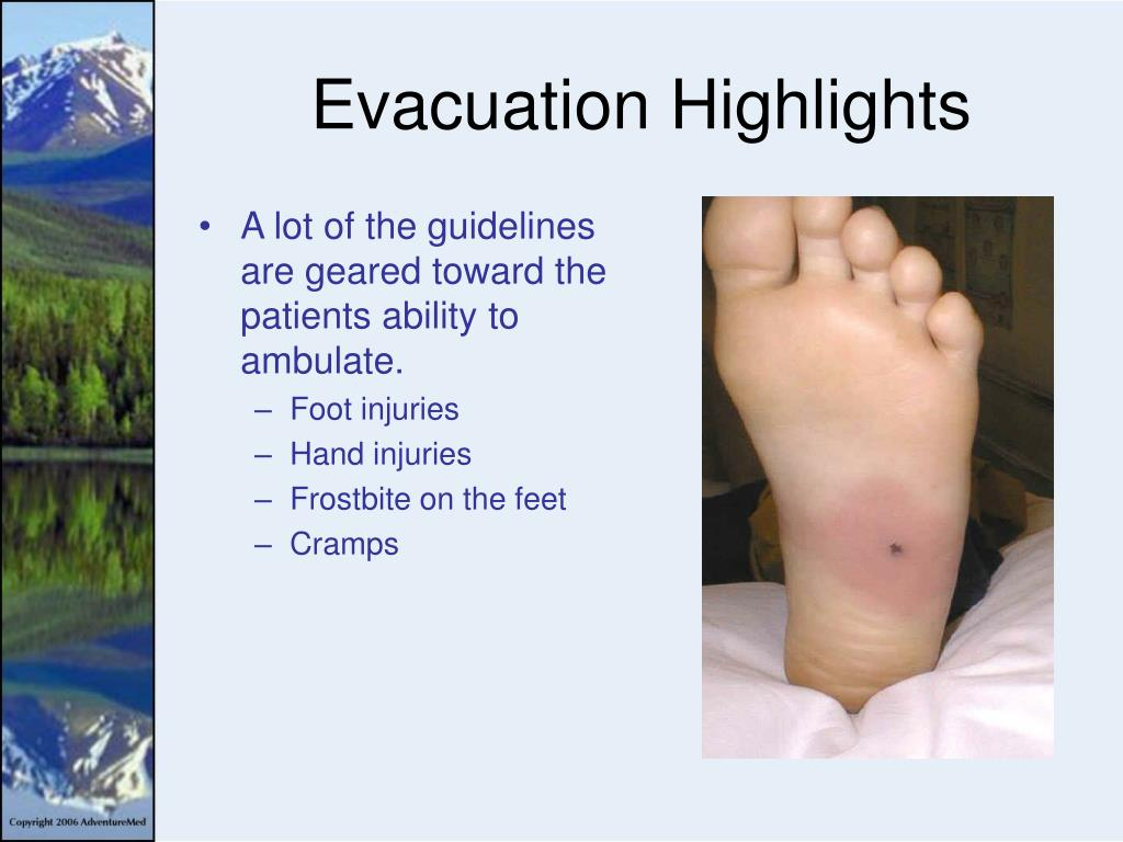 Evacuation Highlights