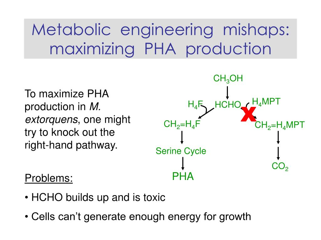 Metabolic  engineering  mishaps: