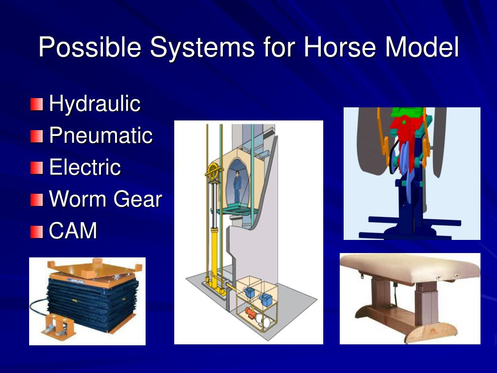Possible Systems for Horse Model