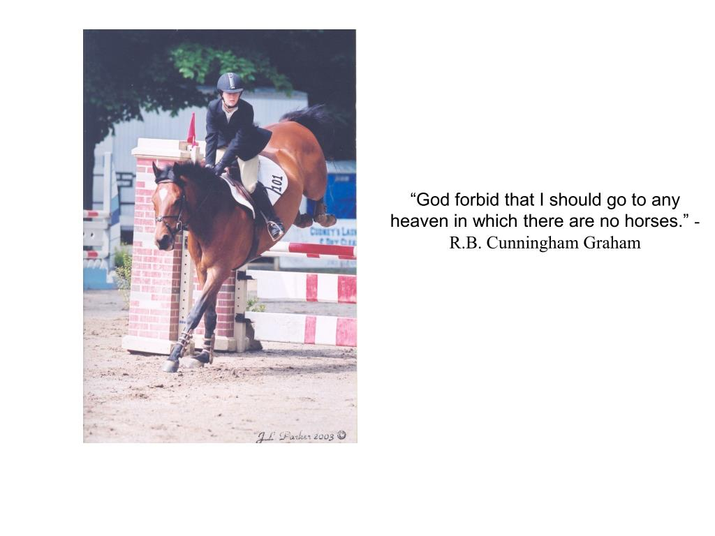 """God forbid that I should go to any heaven in which there are no horses."""
