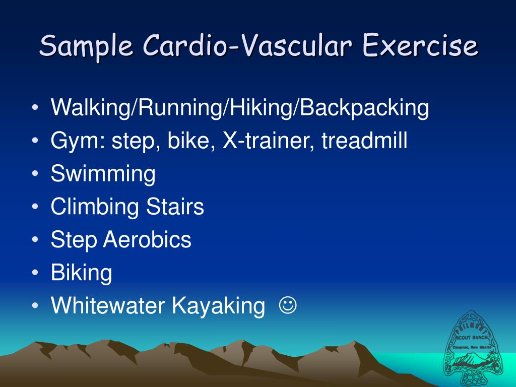 Sample Cardio-Vascular Exercise