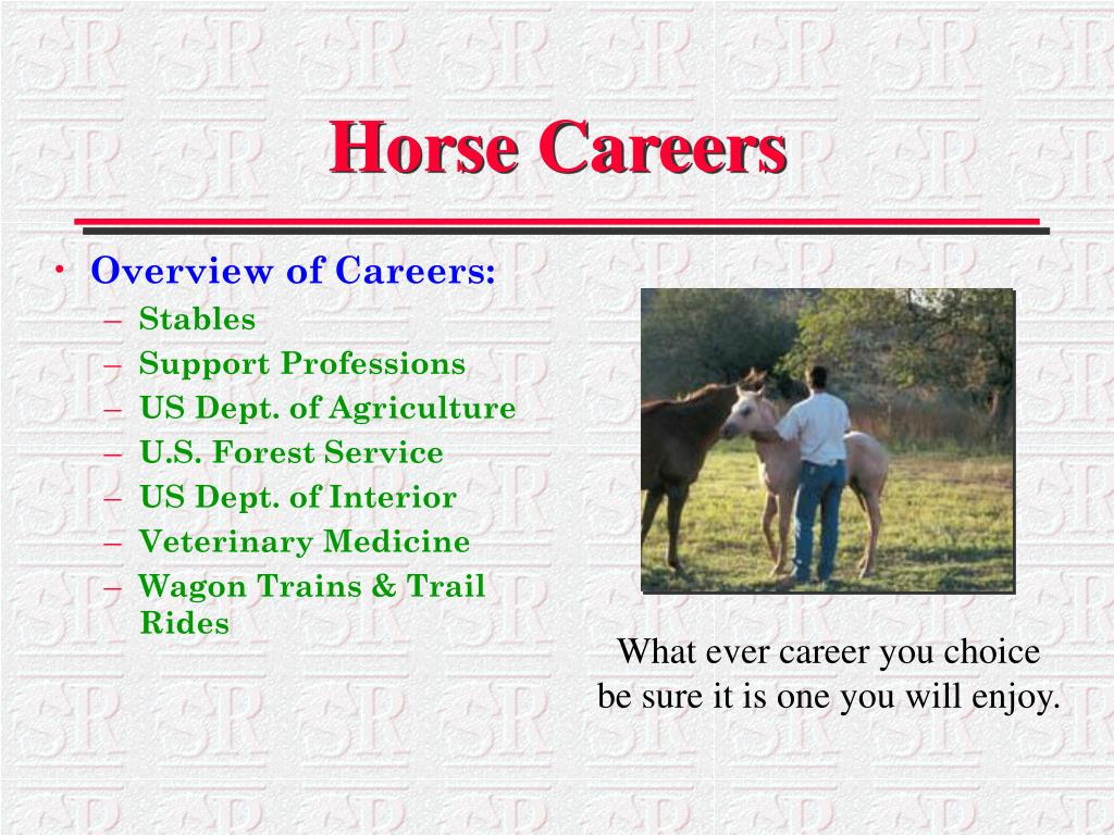 Overview of Careers: