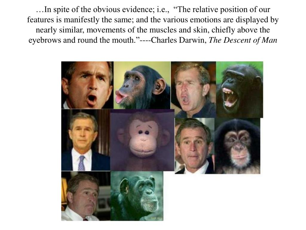 "…In spite of the obvious evidence; i.e.,  ""The relative position of our features is manifestly the same; and the various emotions are displayed by nearly similar, movements of the muscles and skin, chiefly above the eyebrows and round the mouth.""----Charles Darwin,"