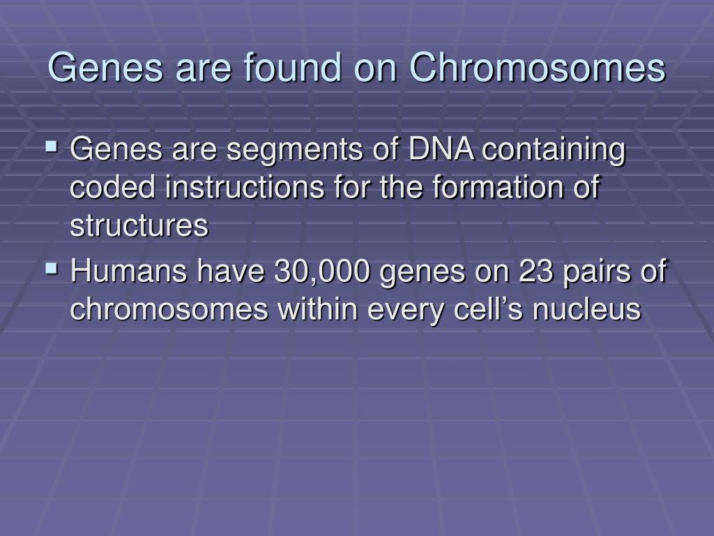 Genes are found on Chromosomes