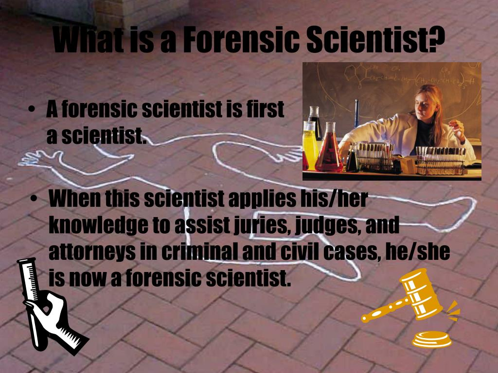 What is a Forensic Scientist?