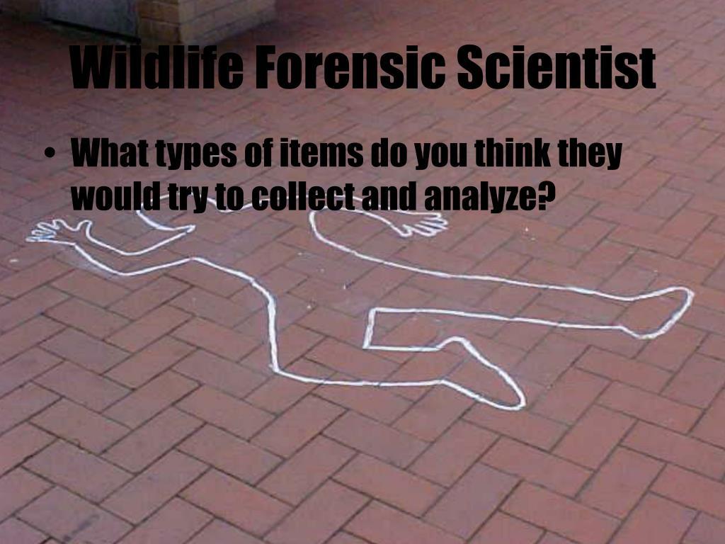 Wildlife Forensic Scientist