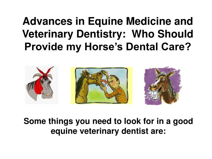 Advances in Equine Medicine and Veterinary Dentistry:  Who Should Provide my Horse's Dental Care?