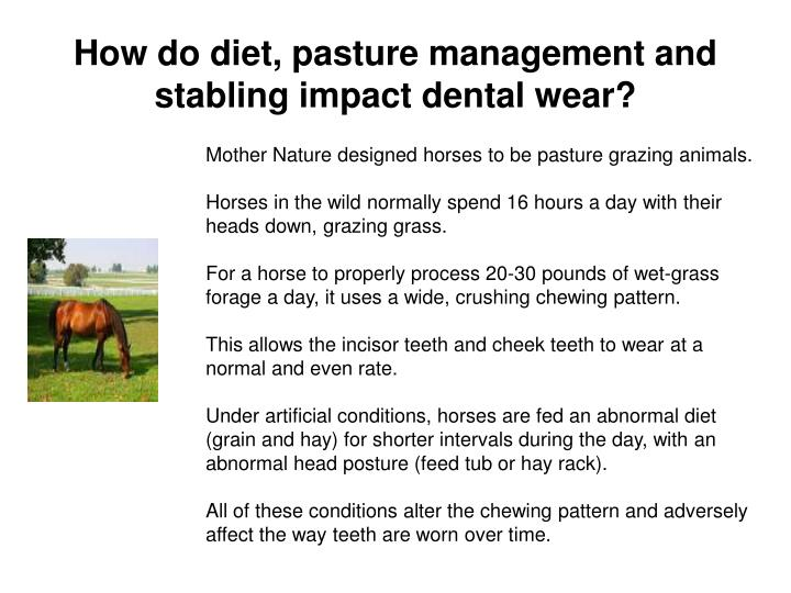 How do diet, pasture management and stabling impact dental wear?