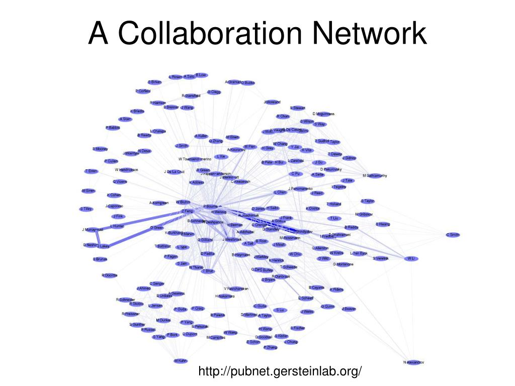 A Collaboration Network