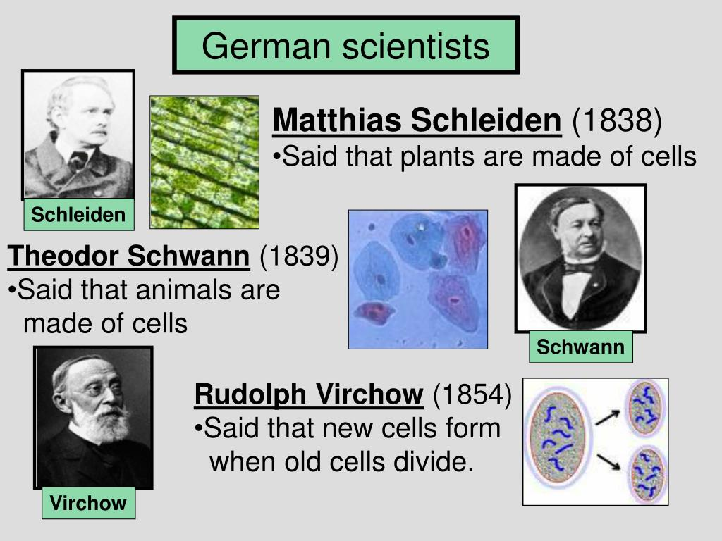 German scientists