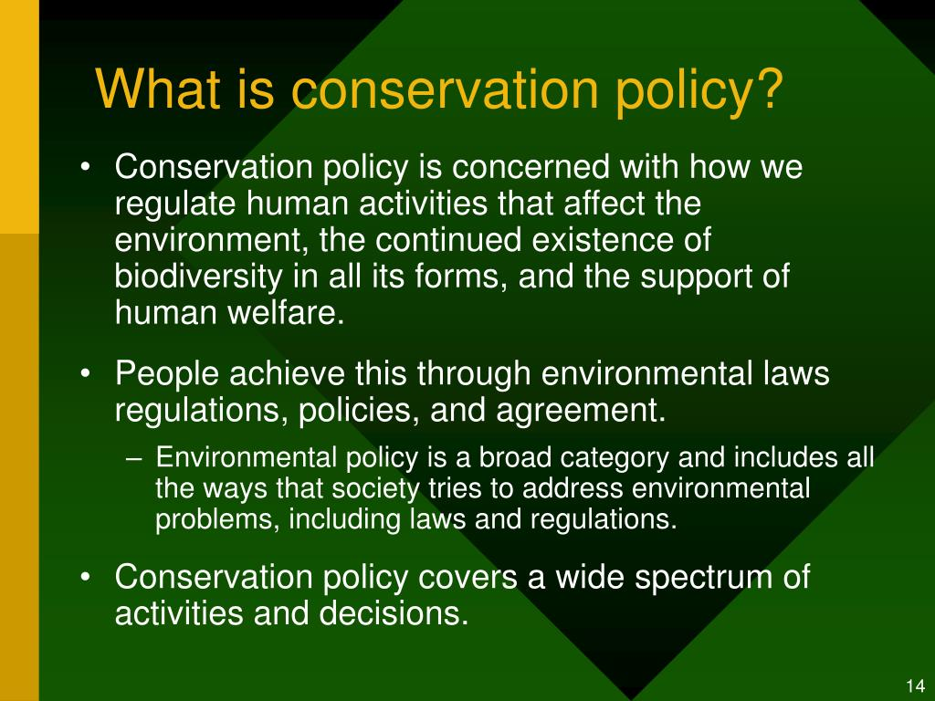 What is conservation policy?