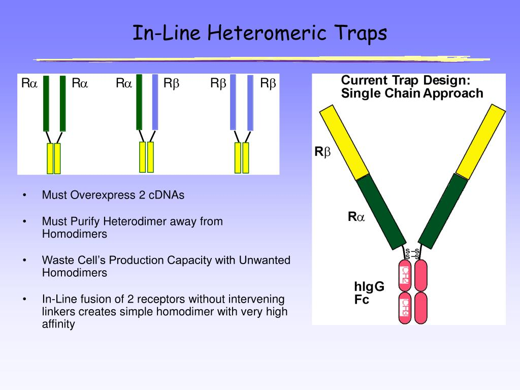 In-Line Heteromeric Traps