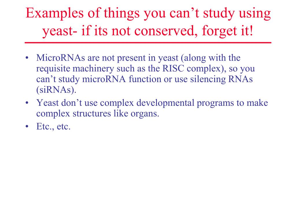 Examples of things you can't study using yeast- if its not conserved, forget it!