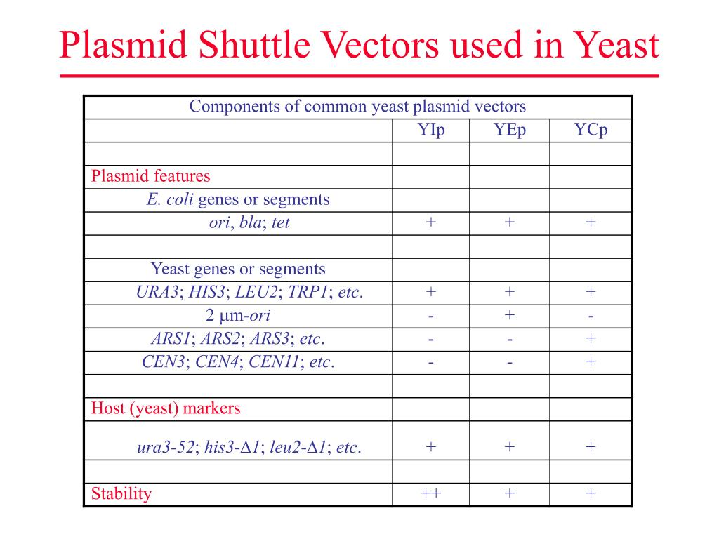 Plasmid Shuttle Vectors used in Yeast