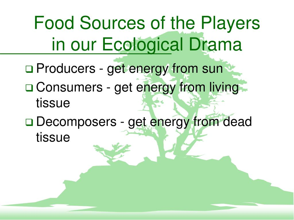 Food Sources of the Players in our Ecological Drama