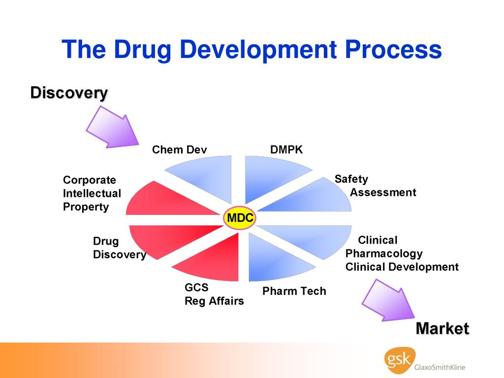 The Drug Development Process