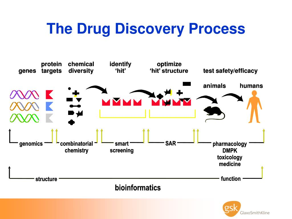 The Drug Discovery Process