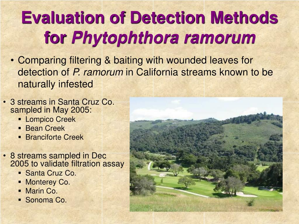 Evaluation of Detection Methods for