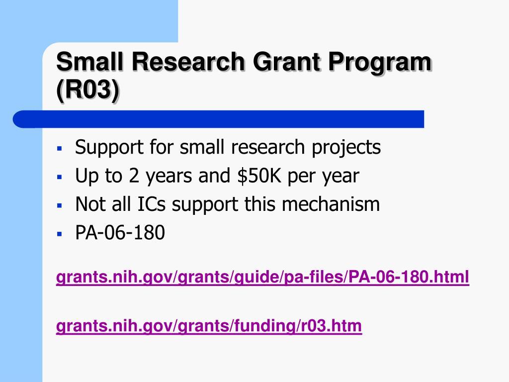 Small Research Grant Program (R03)