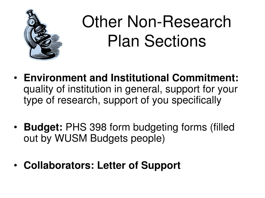 Other Non-Research Plan Sections