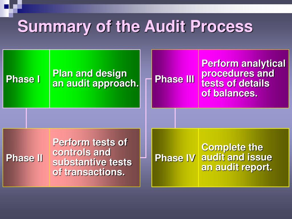 audit program ii Ii i background  and prepared an audit program based on the assessment and the us government accountability office's (gao) federal information system controls.