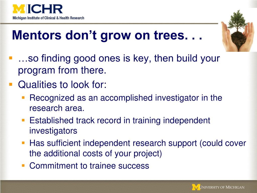 Mentors don't grow on trees. . .